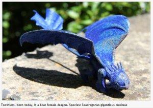dragon-en-titane-du-csiro