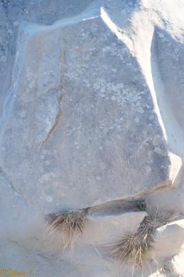 texte en Sanscrit sur une autre pierre